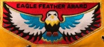 Eagle Feather patch